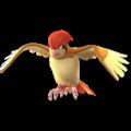APP, Pokémon GO, 寶可夢圖片, #017 比比鳥/Pidgeotto
