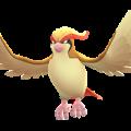 APP, Pokémon GO, 寶可夢圖片, #018 大比鳥/Pidgeot