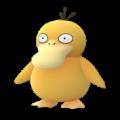 APP, Pokémon GO, 寶可夢圖片, #054可達鴨/Psyduck