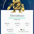 APP, Pokémon GO, 寶可夢資料, #125 電擊獸/Electabuzz