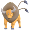 APP, Pokémon GO, 寶可夢圖片, #128肯泰羅/Tauros