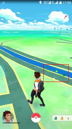 APP, Pokémon GO, 捕捉, 草地