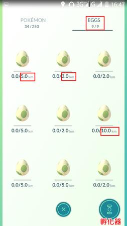 APP, Pokémon GO, 孵蛋01