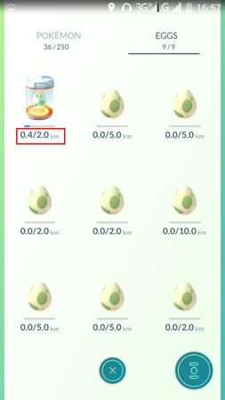 APP, Pokémon GO, 孵蛋05