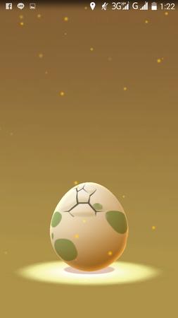 APP, Pokémon GO, 孵蛋07