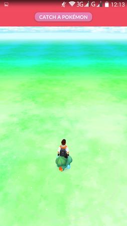 APP, Pokémon GO, 基本設定04