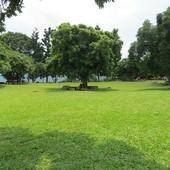 仙湖休閒農場, 空間, 大草原