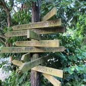 大鋤花間咖啡生態農場, 戶外環境, 大都市指示牌