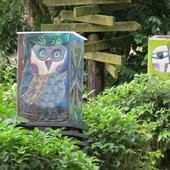 大鋤花間咖啡生態農場, 裝潢佈置, 燈箱