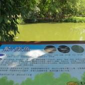 台糖尖山埤江南渡假村, 戶外空間, 解說牌, 餐條魚