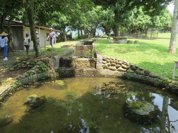 仙湖休閒農場, 環境, 排洪生態溪