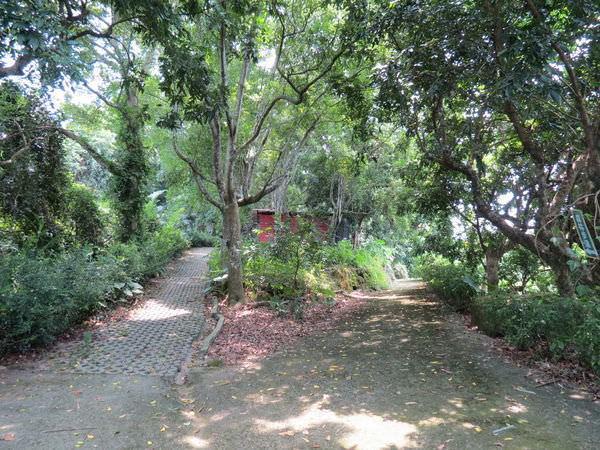 仙湖休閒農場, 環境, 森林步道