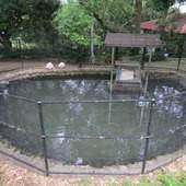 仙湖休閒農場, 設施, 飼養場