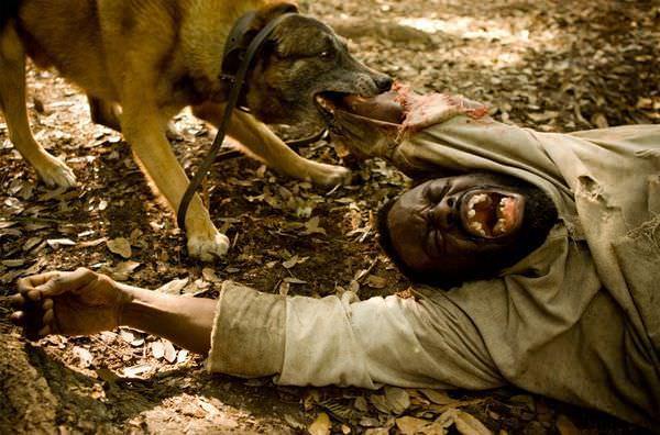 Movie, Django Unchained(美) / 決殺令(台) / 被解救的姜戈(中) / 黑殺令(港), 電影劇照