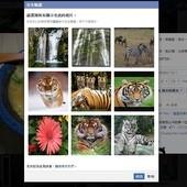 Facebook(臉書), 相片, 安全認證