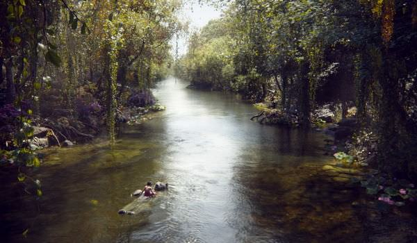 Movie, The Jungle Book(美) / 與森林共舞(台) / 奇幻森林(中), 電影劇照