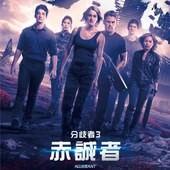 Movie, The Divergent Series: Allegiant(美) / 分歧者3:赤誠者(台) / 分歧者系列:赤誠者‧末世醒覺(港) / 分歧者3:忠诚世界(網), 電影海報