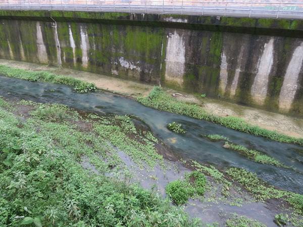 內溝溪自然生態步道, 樂活公園, 第二區, 水溝
