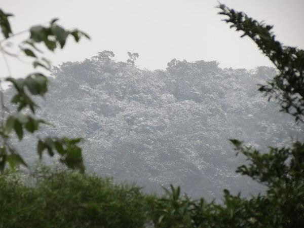 台北下雪記:汐平追雪-06