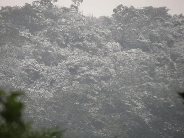 台北下雪記:汐平追雪-07