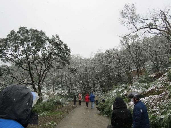 台北下雪記:汐平追雪-11