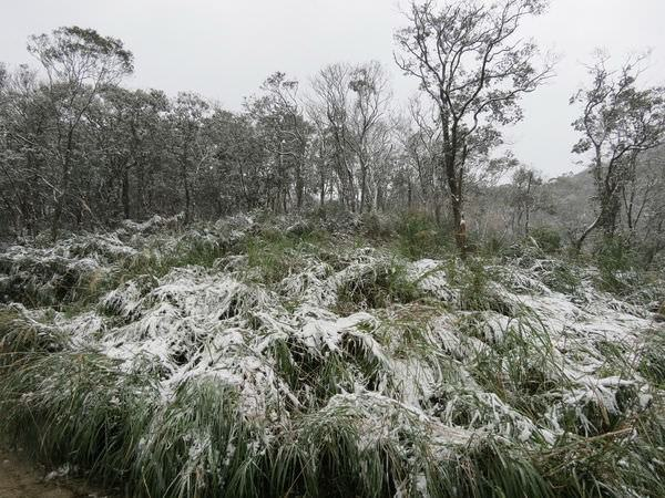 台北下雪記:汐平追雪-14