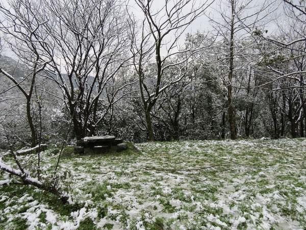 台北下雪記:汐平追雪-22
