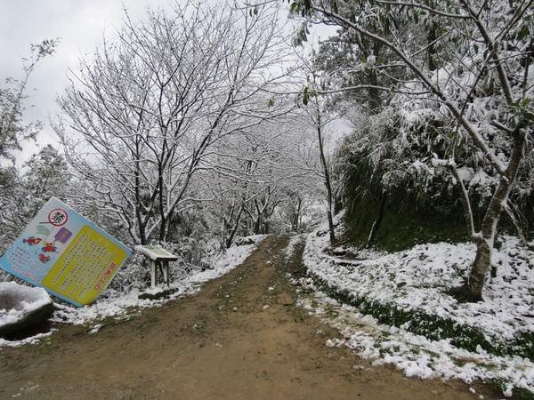 台北下雪記:汐平追雪-34