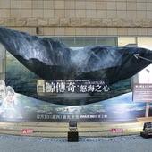 Movie, In the Heart of the Sea / 白鯨傳奇:怒海之心 / 海洋深处 / 巨鯨傳奇: 怒海中心, 廣告看板, 美麗華影城