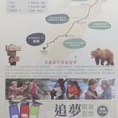 Movie, A Walk in the Woods / 別跟山過不去 / 林中漫步, 電影DM