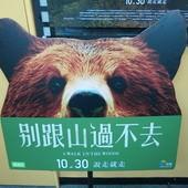 Movie, A Walk in the Woods / 別跟山過不去 / 林中漫步, 廣告看板