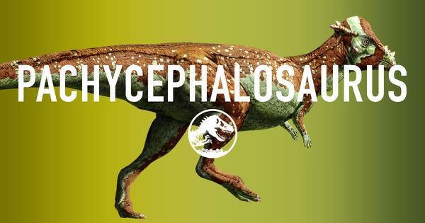 Movie, Jurassic World / 侏羅紀世界 / 侏罗纪世界, Pachycephalosaurus / 厚頭龍