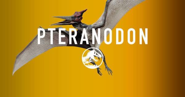 Movie, Jurassic World / 侏羅紀世界 / 侏罗纪世界, Pteranodon / 翼龍