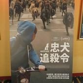 Movie, Fehér isten / 忠犬追殺令 / 白色上帝 / White God, 廣告看板, 特映會