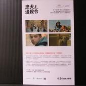 Movie, Fehér isten / 忠犬追殺令 / 白色上帝 / White God, 電影DM
