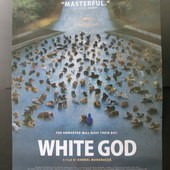 Movie, Fehér isten / 忠犬追殺令 / 白色上帝 / White God, 電影海報