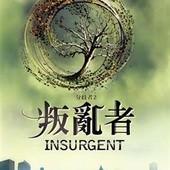 小說, Insurgent(叛亂者), 封面