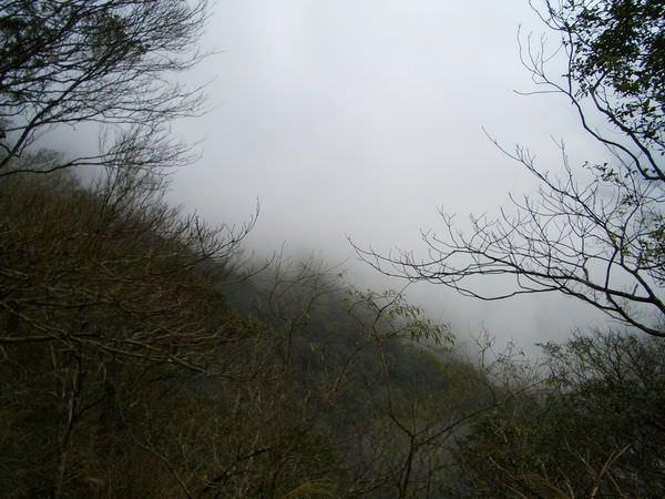 闖北橫Ⅱ 483 北橫公路 起霧