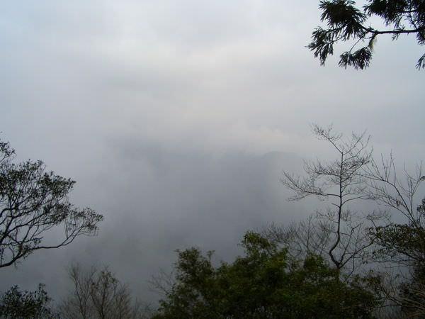 闖北橫Ⅱ 484 北橫公路 起霧