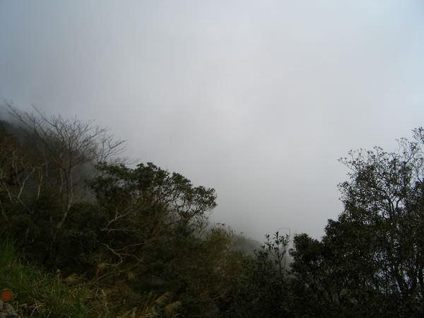 闖北橫Ⅱ 485 北橫公路 起霧