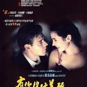 Movie, A Beautiful Mind / 美麗境界 / 美丽心灵 / 有你終生美麗, 電影海報