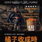 Movie, მანდარინები / Mandariinid / 橘子收成時 / 金橘 / Tangerines, 電影海報