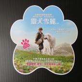 Movie, Belle et Sébastien / 靈犬雪麗 / 灵犬雪莉 / 我和貝貝的歷險, 電影DM