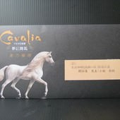 卡瓦利亞劇團(Cavalia), 夢幻舞馬, 邀請函