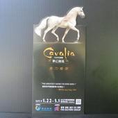 卡瓦利亞劇團(Cavalia), 夢幻舞馬, DM