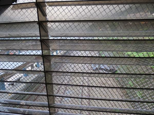 猴硐貓村, 貓橋