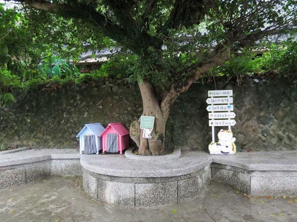 猴硐貓村, 貓咪環境