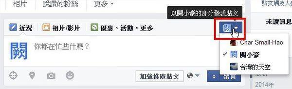 臉書(Facebook), 粉絲專頁, 分文身份