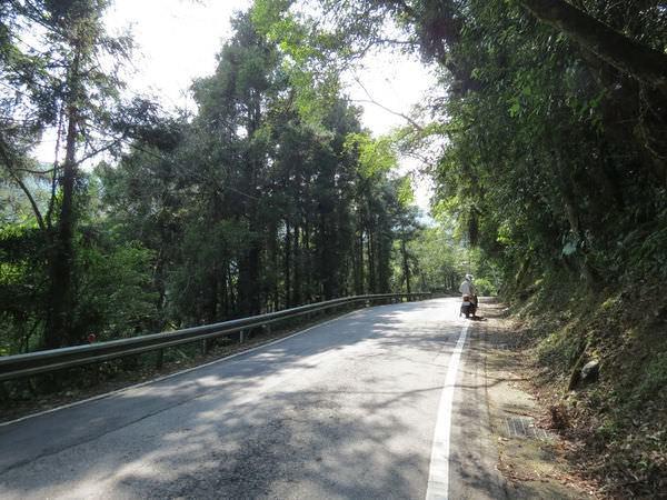 北橫公路(排骨溪-棲蘭)
