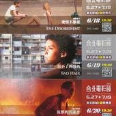 Movie, 愛情不服從.直不了的男孩.沉默的共謀者, 特映會(2014台北電影節)